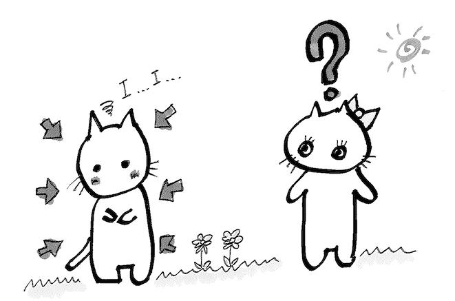 shy-cat3